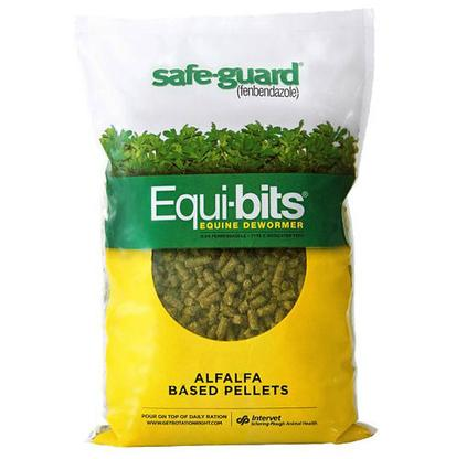 Safe Guard Equi- Bits