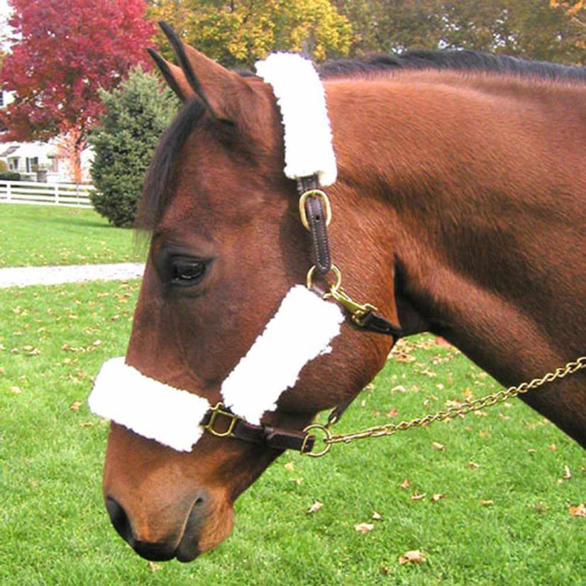 Intrepid International Fleece Halter Set WHITE
