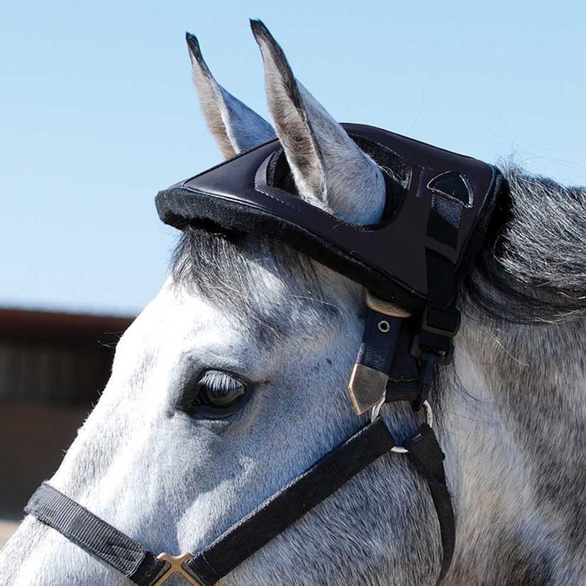 Cashel Horse Helmet
