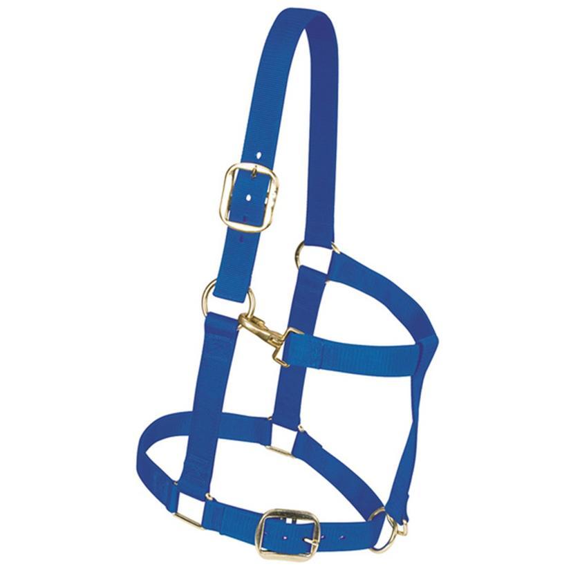 Weaver Leather Nylon Draft Horse Halter BLUE