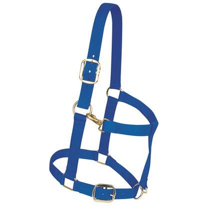 Weaver Leather Nylon Draft Horse Halter
