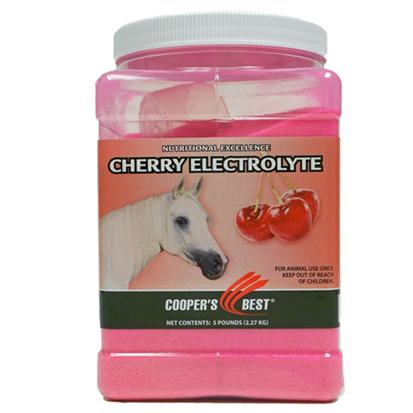 First Companion Equi - Dex Cherry Electrolyte 5lb