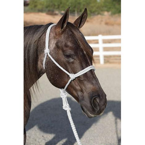 Professional Choice Ranch Hand Halter and Lead