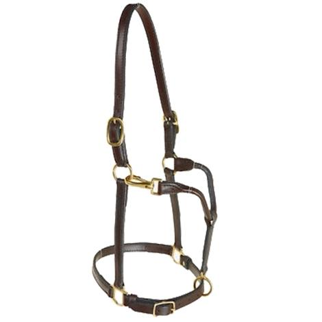 STT Yearling Track Halter 3/4in