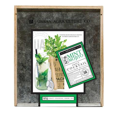Urban Agriculture Co. Grow Your Own Mojito Kit