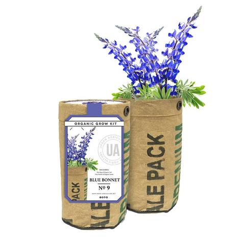 Urban Agriculture Co. Grow Your Own Bluebonnet Kit