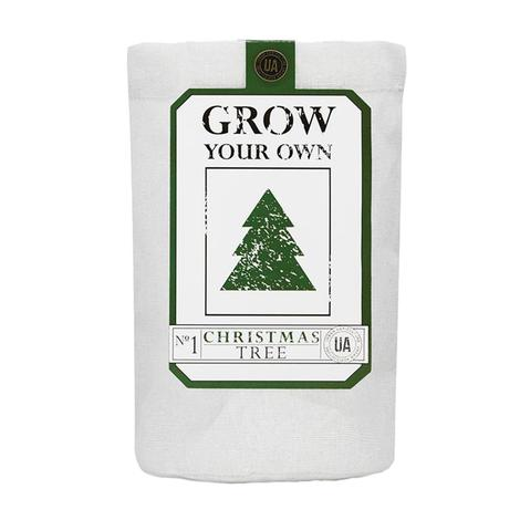 Urban Agrigulture Co. Grow Your Own Christmas Tree Kit
