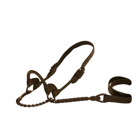 Sullivan's First Class Show Halter - Brown, Size Medium