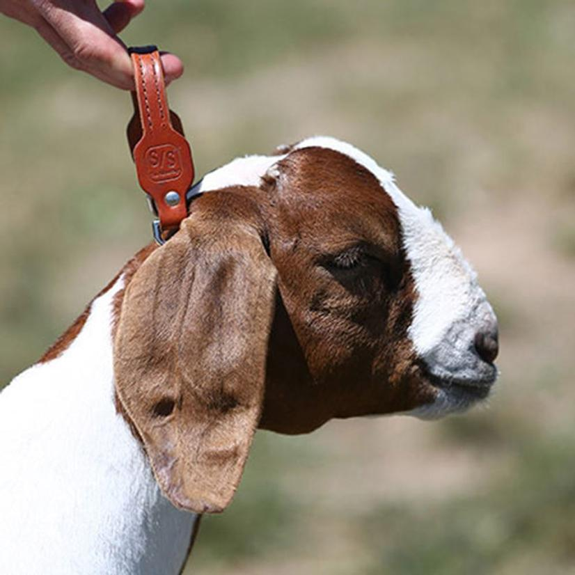 Leather Handle Goat Collar Chain