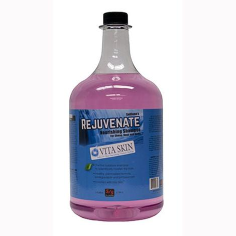 Rejuvenate Shampoo Gallon