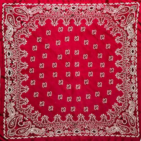Wild Rags Red Bandanna 27x27