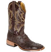 Cinch Women's Golden Winged Brown Ostrich Cowgirl Boots