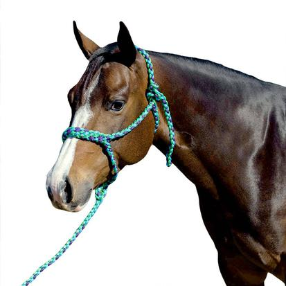 Mustang Flat Plaited Noseband Halter