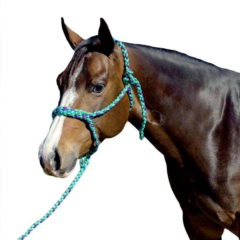 Mustang Flat Plaited Noseband Halter KG/PURP/TURQ