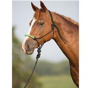 Mustang Bling Rope Halter