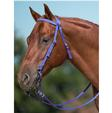 Mustang Horse Bridle