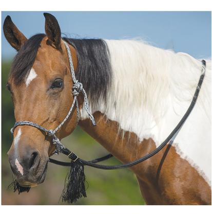 Mustang Deluxe Bitless Bridle SIL/BK/WHITE