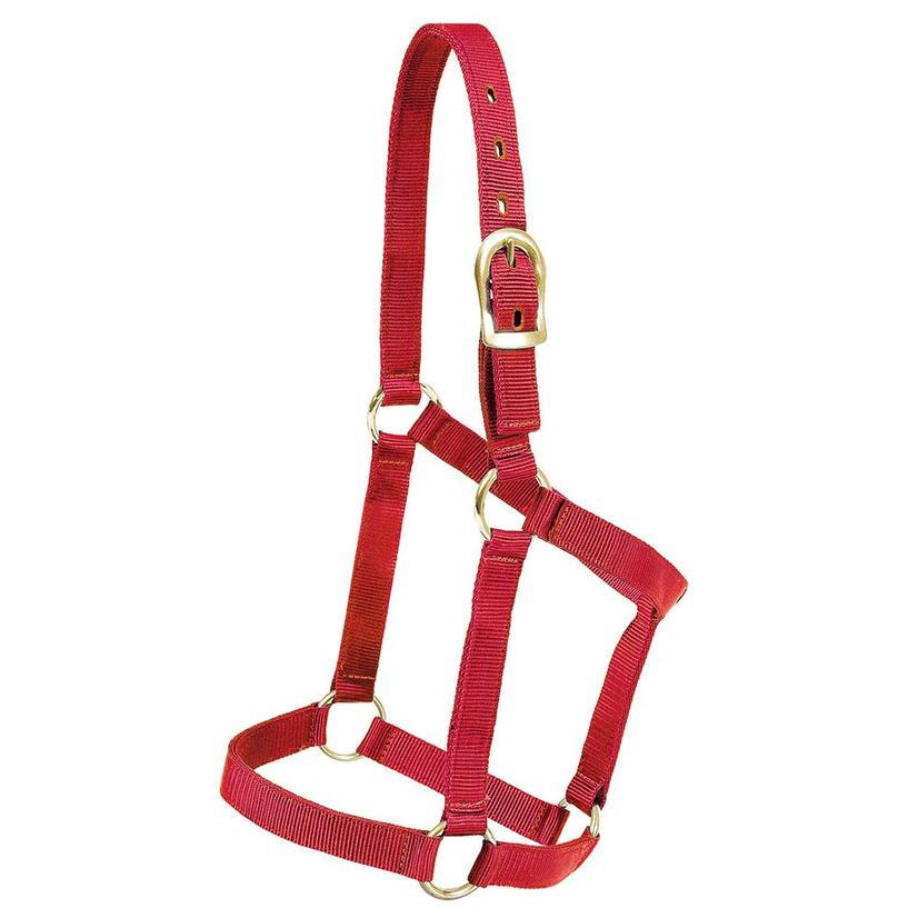 Mustang Economy Halter RED