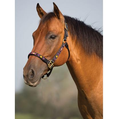 Mustang Beaded Halter