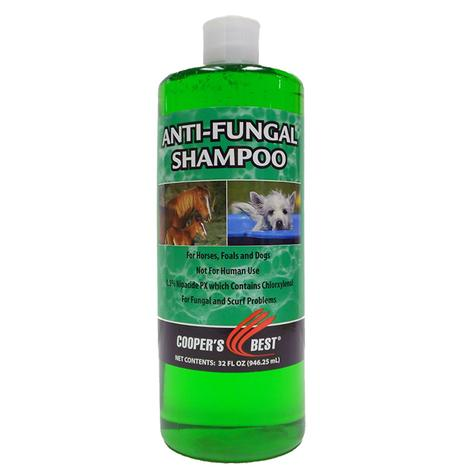 First Companion Antifungal Shampoo 32 Oz.