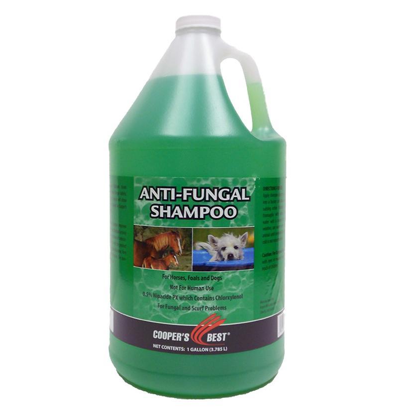 First Companion Antifungal Shampoo 1 Gallon