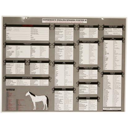 Horseman ' S English/Spanish Poster