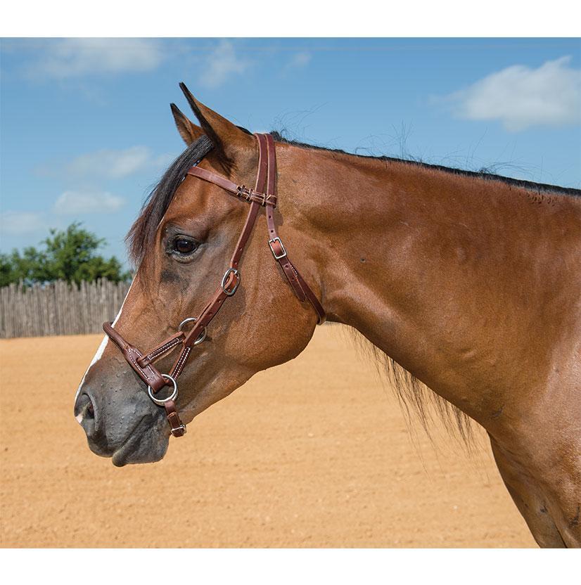 STT Round Leather Nose Sidepull