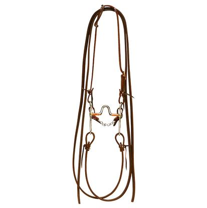 STT Bridle w/ Custom Bit