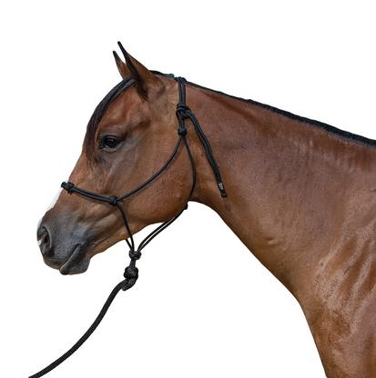 STT Black Knotted Training Halter 14 Foot Lead Yearling