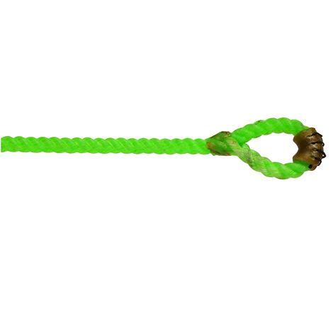 Willard Neon Green Black Tail Piggin String