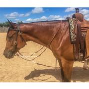 STT German Martingale w/Barrel Reins