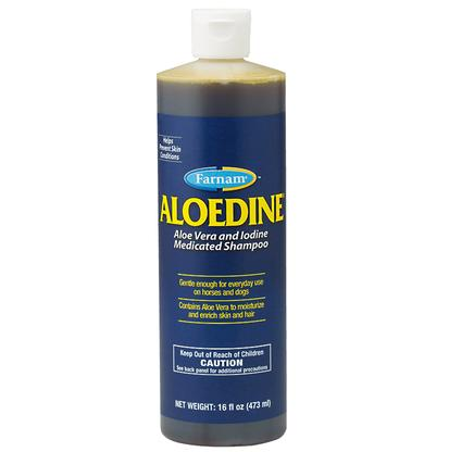 Aloedine Medicated Shampoo