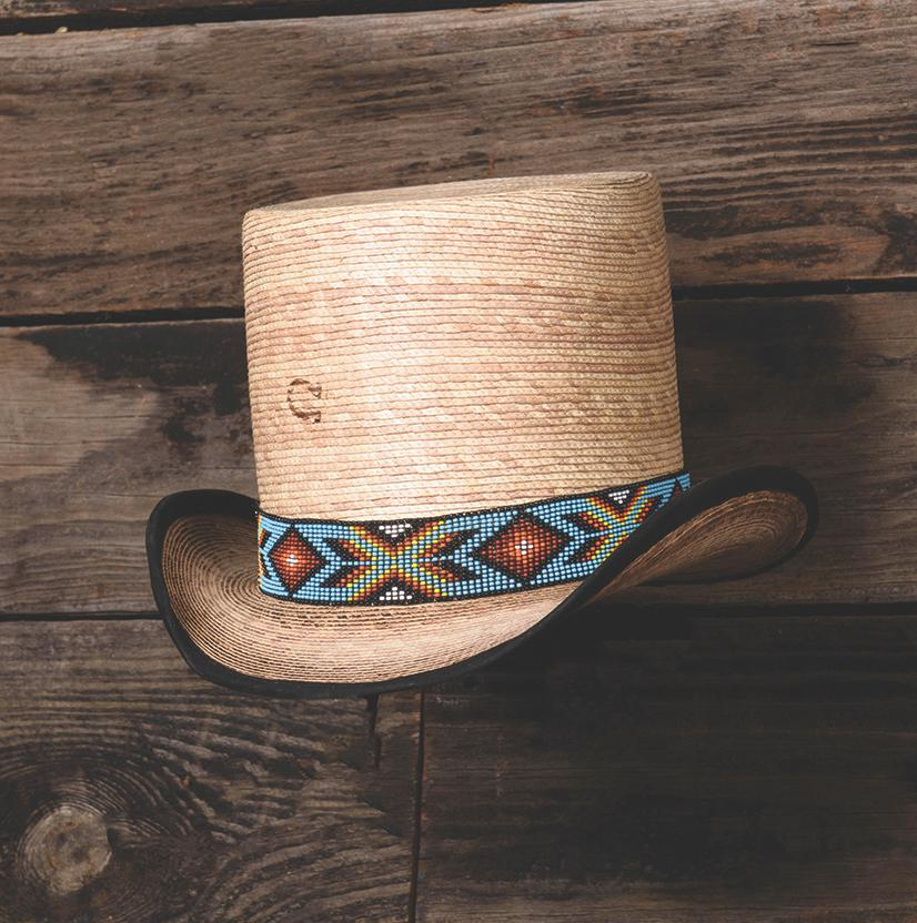 Outlaw Spirit Palm Top Hat Charlie 1 Horse